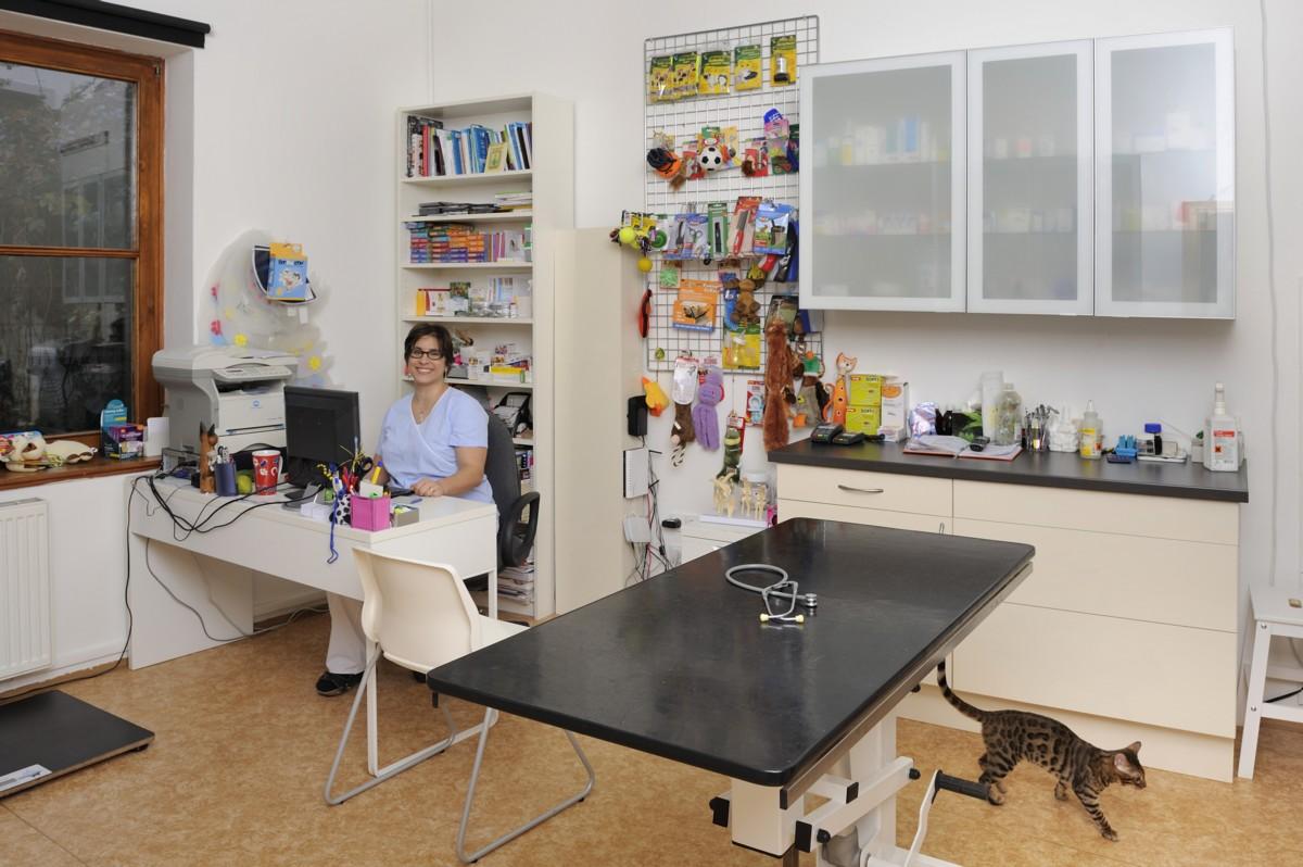 Nahlédněte do zajímavého prostředí veterinární ordinace.