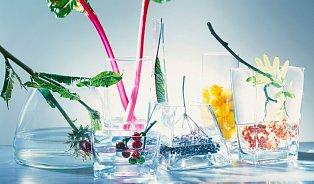 Žízeň není jediný důvod, proč pít