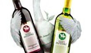 Pravé Svatomartinské víno je pouze z lahve!