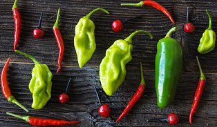 Kapsaicin: poklad ukrytý vpálivých paprikách