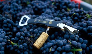 Pochybnosti oresveratrolu: víno, tablety, nebo nic?