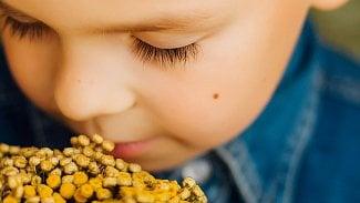 Bylinky pro děti: první pomoc vdobě zimních nemocí
