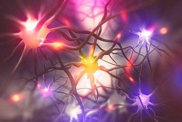 """""""Trénink mozku mi pomáhá cítit se stále mladá a svěží,"""" říká Nicole Kidman (a účinkuje v reklamě na Brain Training)"""