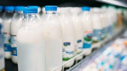 Vitalia.cz: Skutečně lepší mléko? Co znamenají nápisy na obale
