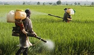 97% potravin neobsahuje rezidua pesticidů, říkáEFSA