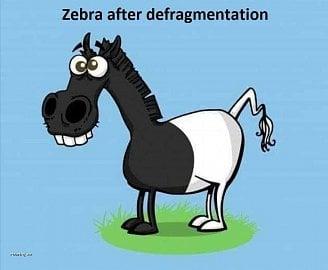 Zebra po defragmentaci