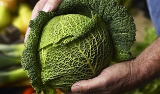 Boom a bum farmářských trhů: minulost, přítomnost a jak poznat tendobrý