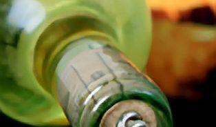 Vinaři vyhlásili sto nejlepších vín Česka