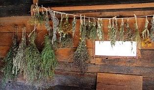 Přibalte si na dovolenou bylinkovou lékárničku