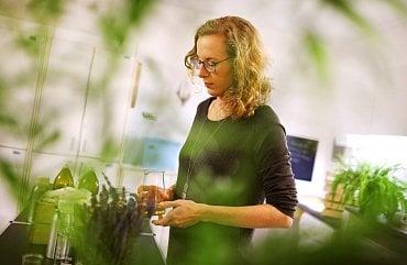 Aneta Adamčíková při práci (běžně je dílna z hygienických důvodů bez zeleně).