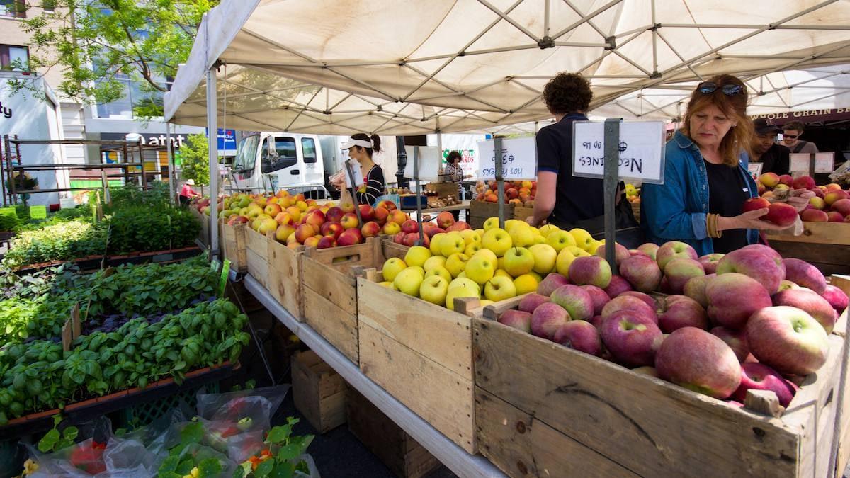 Nákup venku je méně rizikový než vsupermarketu, protestují farmářské trhy
