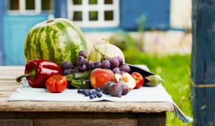 Jíme nejméně ovoce azeleniny zcelé střední Evropy