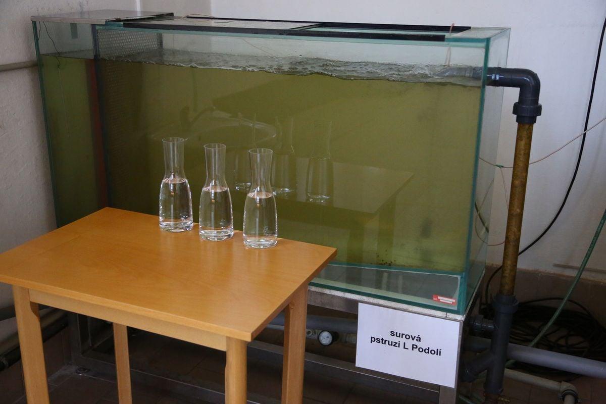 Voda z Vltavy před a po úpravě na pitnou: teď z kohoutků v Praze