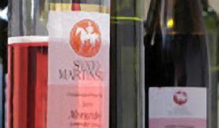 Svatomartinské víno nikdy nearchivujte