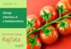 Vitamín A a betakaroten