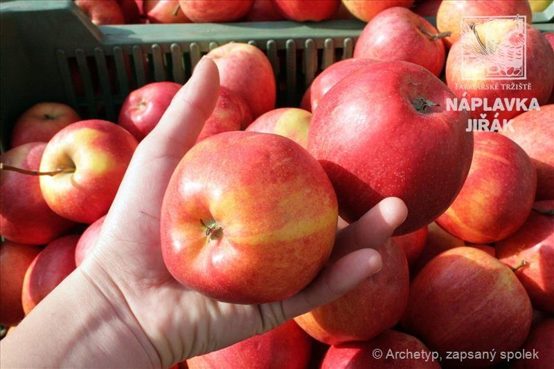 Jablečné slavnosti, festival moštu a cideru na Jiřáku