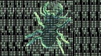 Security Bug
