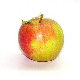 Využití: Jablka Šampion jsou ideální pro odšťavnění i pečení