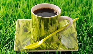 Hořčík může chuti kávy iprospět