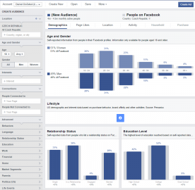Facebook Audience Insights - Česko