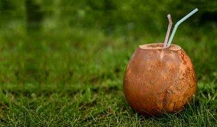 Mladý kokos je plný vitamínů, masa apudinku