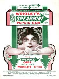 žvýkačka Wrigley Spearmint