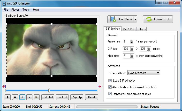 Pomocí Any GIF Animator zvládnete převést video do GIF