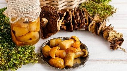 Vitalia.cz: 10možností, jak uchovat houby