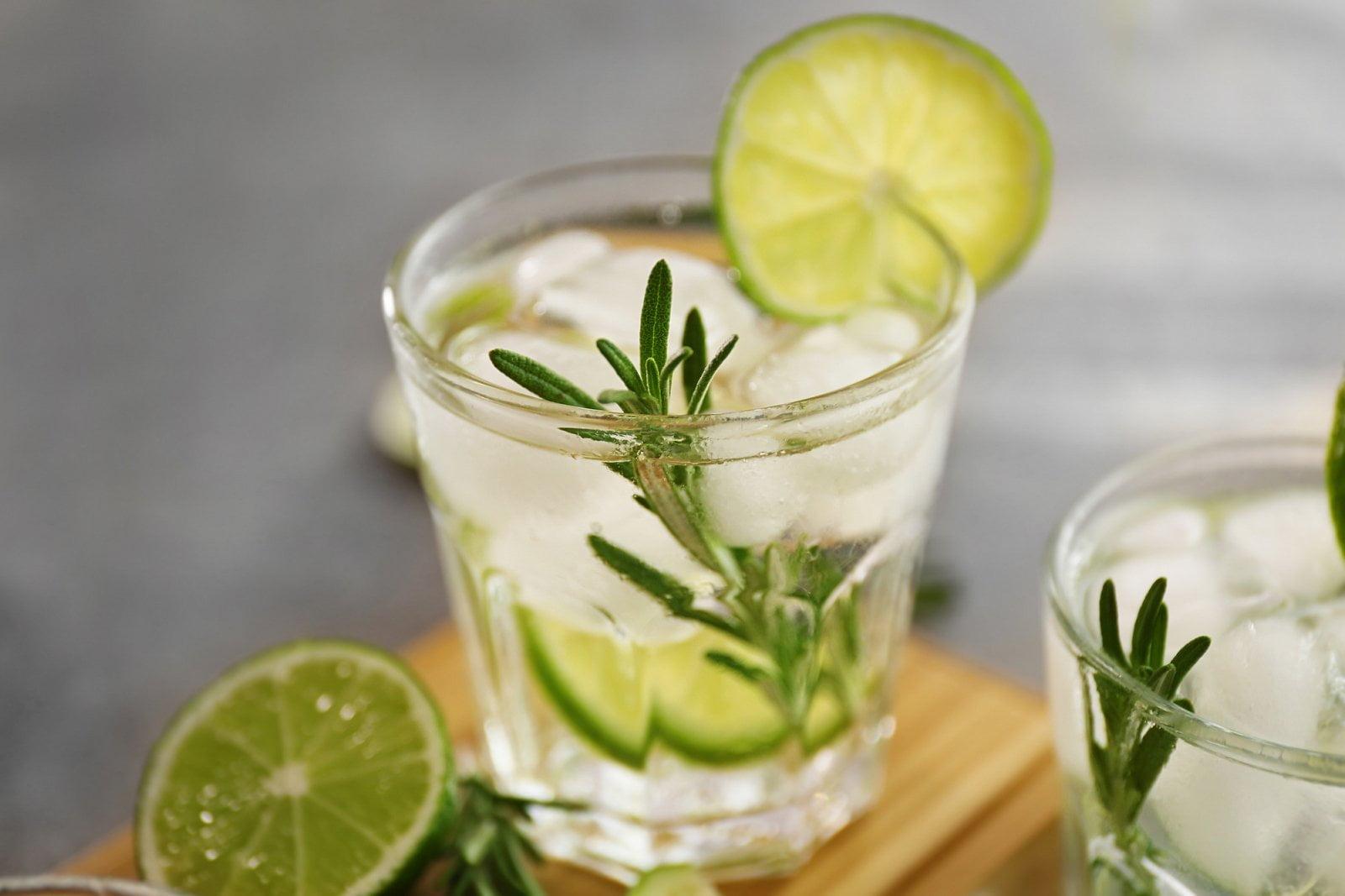 Nealkoholický gin