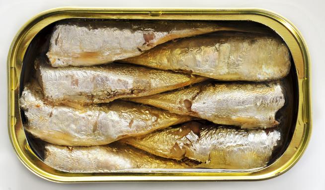 Výsledek obrázku pro sardinky