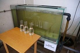 Takhle vypadá voda zVltavy před a po úpravě na pitnou: nyní zkohoutků vPraze