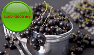 Zčeského ovoce má nejvíc vitamínu C černý rybíz