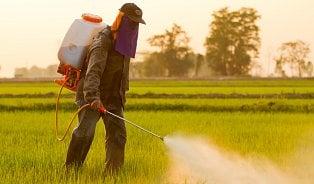 Vitalia.cz: Pesticidy: Zabíjejí plevel a způsobují rakovinu