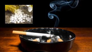 120na80.cz: 7překážek při odvykání kouření