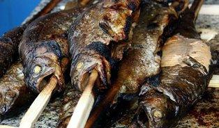 Jerky, škvarky adalší neznámé výrobky znašich ryb