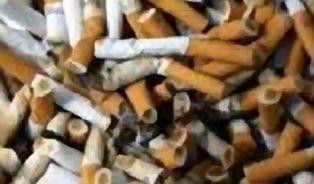 Rakovina plic: Ortel, který ne vždy vede ke smrti