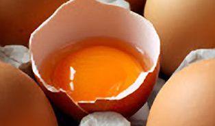 Zdraží kvůli vejcím rohlíky?
