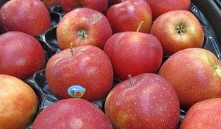 Vitalia.cz: Jablka s pesticidy: neví se, kdo je prodává