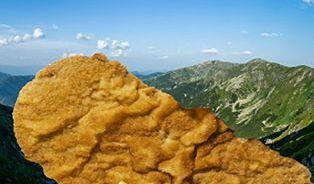 10rozdílů mezi českou aslovenskou restaurací