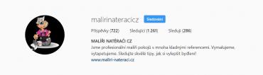 Výstižně napsané bio mají na Instagramu Malíři a natěrači.