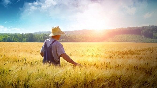 Cukr a biè. Nejprve #EET a spol., teï vláda podpoøí venkovské podnikatele