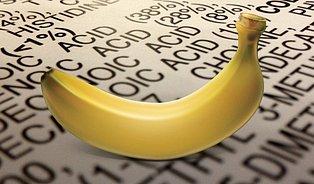 To je skandál: banán obsahuje 75% vody aéčka