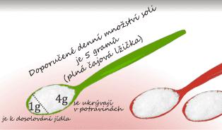 Vitalia.cz: Lžička soli na den je maximum