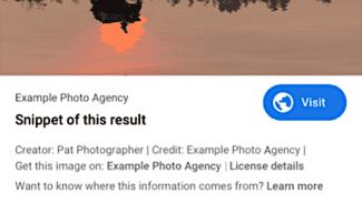 Google Images - zobrazení licence atd.