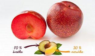 Nové ovoce pluot je sladký kříženec