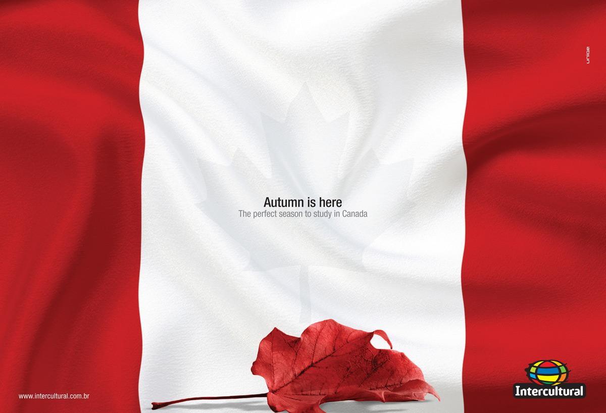 Podívejte se na kreativní podzimní kampaně ze světa