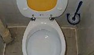Koukáte se do záchodu před spláchnutím?