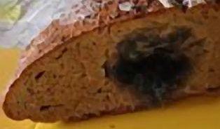 Test chlebů– už druhý den jsou některé na vyhození