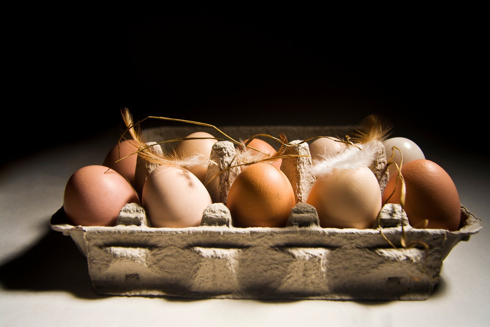 Test vajec