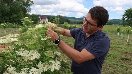 Vitalia.cz: Založil firmu na sirupy a dodává i do McDonald's
